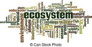 Essay on biodiversity conservation for sustainable development